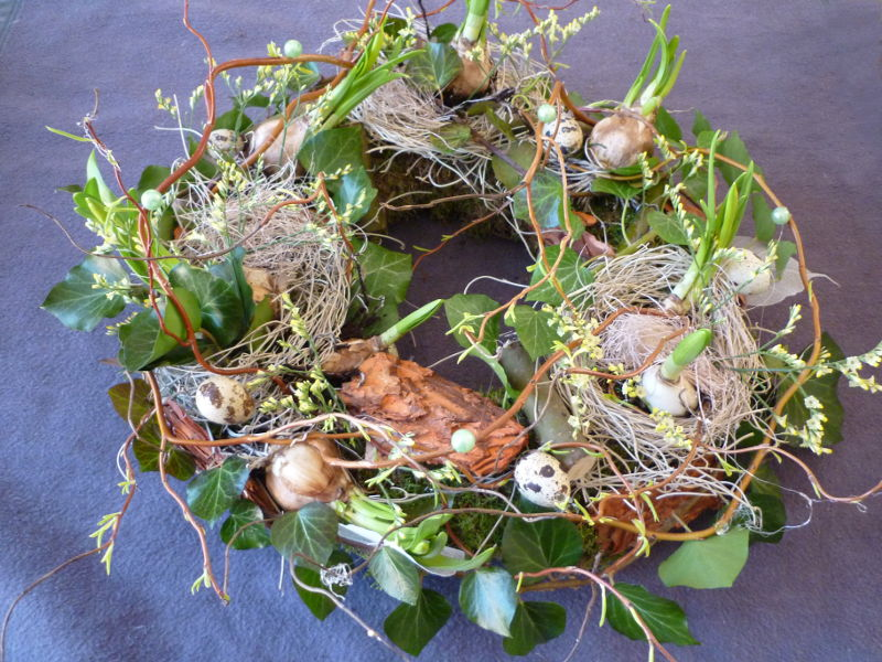 Voorjaars nest